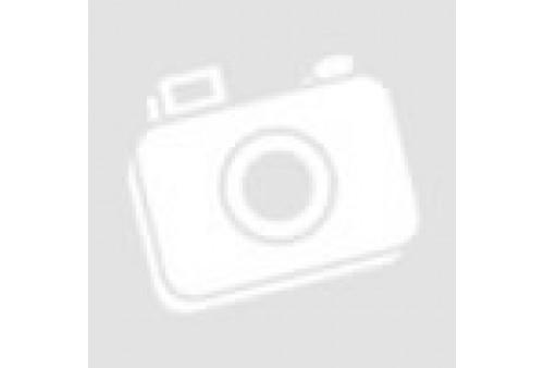 Oisa R 20 (62) Borgmoer